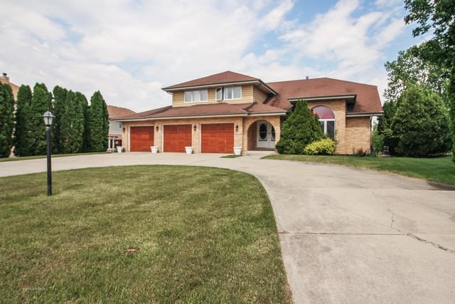 20009 Mohawk Trail, Olympia Fields, IL 60461 (MLS #09977687) :: Ani Real Estate