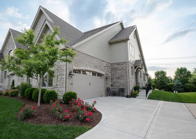 9868 Folkers Drive, Frankfort, IL 60423 (MLS #09994936) :: Ani Real Estate