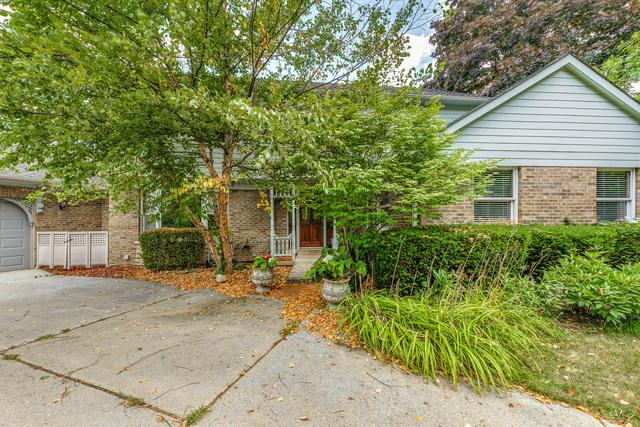 9682 Reding Circle, Des Plaines, IL 60016 (MLS #09998077) :: Baz Realty Network   Keller Williams Preferred Realty