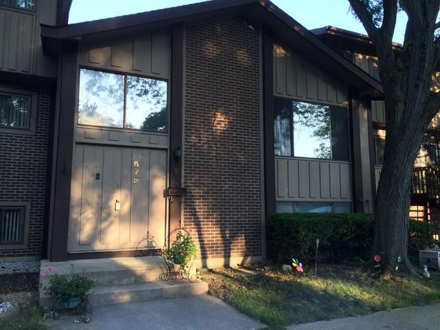 675 Circle Drive, Roselle, IL 60172 (MLS #10053562) :: The Jacobs Group