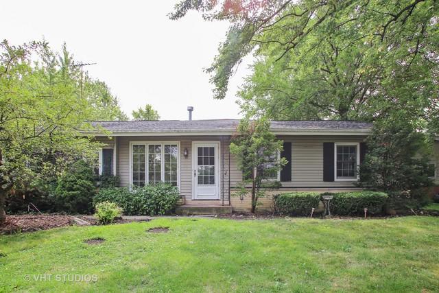 547 Birchwood Avenue, Elk Grove Village, IL 60007 (MLS #10055557) :: The Jacobs Group