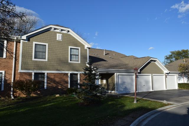 216 Driftwood Lane D2, Schaumburg, IL 60193 (MLS #10122052) :: Baz Realty Network   Keller Williams Preferred Realty