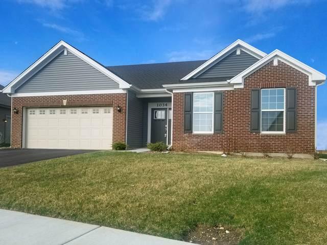 1034 Honey Locust Drive, Crystal Lake, IL 60012 (MLS #10153294) :: John Lyons Real Estate