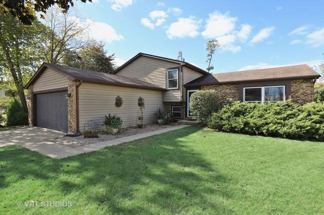 406 Pheasant Ridge Court, Lindenhurst, IL 60046 (MLS #10163487) :: The Wexler Group at Keller Williams Preferred Realty