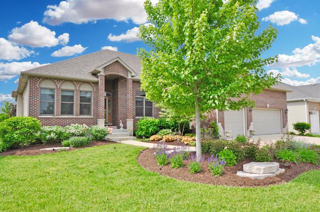 350 Andover Drive, Oswego, IL 60543 (MLS #10167424) :: Helen Oliveri Real Estate