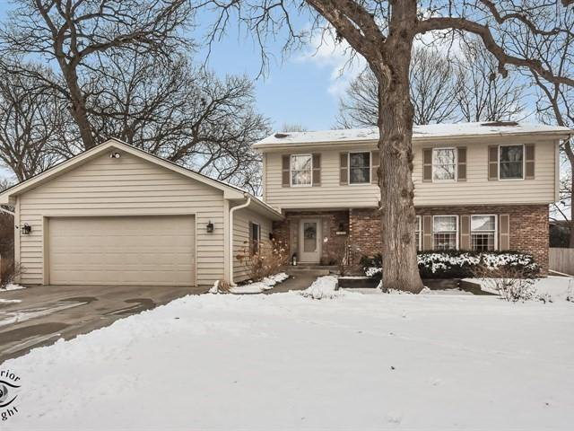 1870 Allen Lane, St. Charles, IL 60174 (MLS #10169117) :: The Dena Furlow Team - Keller Williams Realty