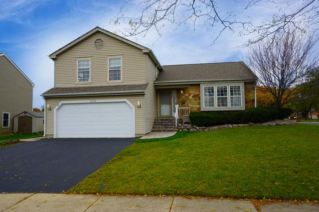 1179 Stanton Road, Lake Zurich, IL 60047 (MLS #10298899) :: Helen Oliveri Real Estate