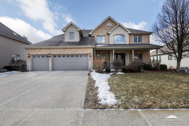 202 Amherst Circle, Oswego, IL 60543 (MLS #10299847) :: Helen Oliveri Real Estate