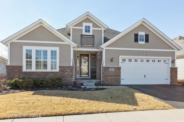 2623 Foxglove Street, Naperville, IL 60564 (MLS #10308649) :: Baz Realty Network   Keller Williams Preferred Realty