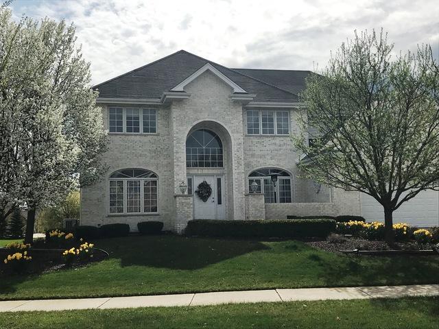 22973 Lakeview Estates Boulevard, Frankfort, IL 60423 (MLS #10316497) :: BNRealty