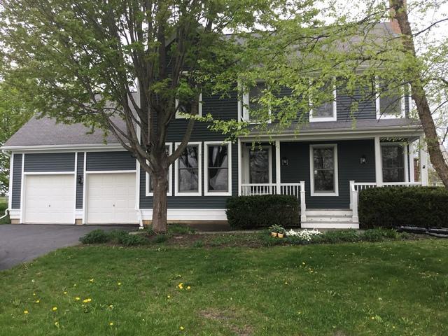 550 Bluestem Lane, Grayslake, IL 60030 (MLS #10325753) :: Ryan Dallas Real Estate