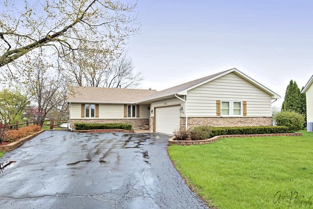 447 Red Rock Drive, Lindenhurst, IL 60046 (MLS #10362943) :: Berkshire Hathaway HomeServices Snyder Real Estate