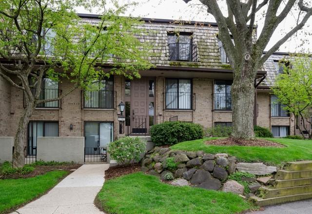 1702 Northfield Square E, Northfield, IL 60093 (MLS #10373136) :: Helen Oliveri Real Estate
