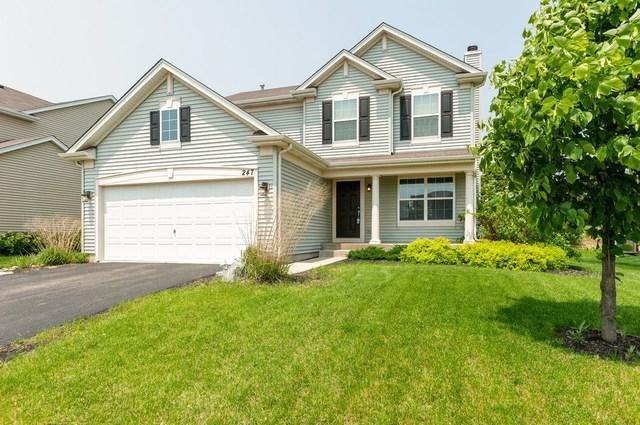 247 Bedford Lane, Volo, IL 60073 (MLS #10388859) :: Angela Walker Homes Real Estate Group