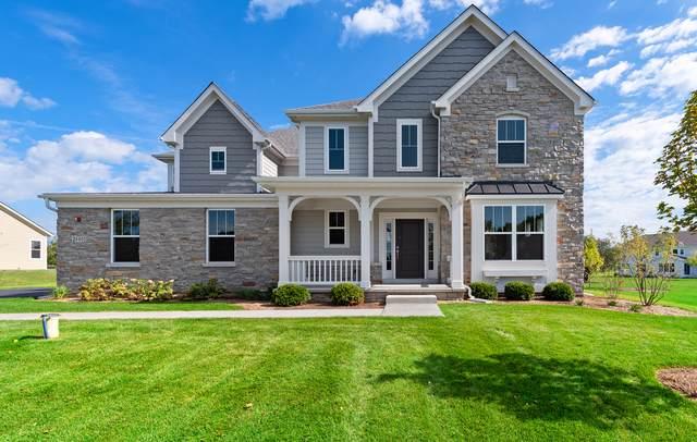 24401 N Blue Aster Lane, Lake Barrington, IL 60010 (MLS #10403080) :: Angela Walker Homes Real Estate Group