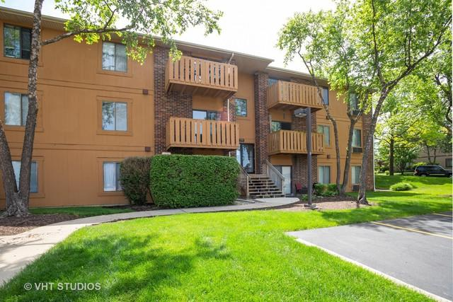 718 Rodenburg Road #205, Roselle, IL 60172 (MLS #10436259) :: The Perotti Group | Compass Real Estate