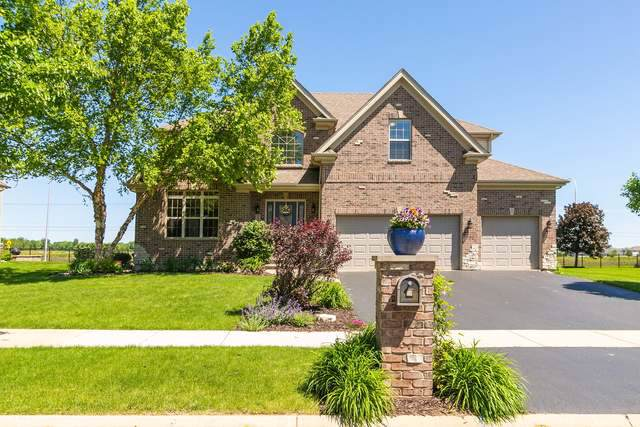 25750 Meadowland Circle, Plainfield, IL 60585 (MLS #10481897) :: Property Consultants Realty