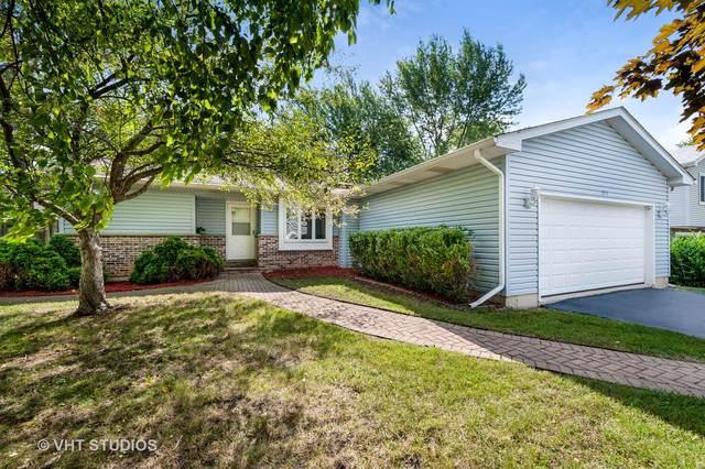 577 White Birch Road, Lindenhurst, IL 60046 (MLS #10488861) :: Berkshire Hathaway HomeServices Snyder Real Estate
