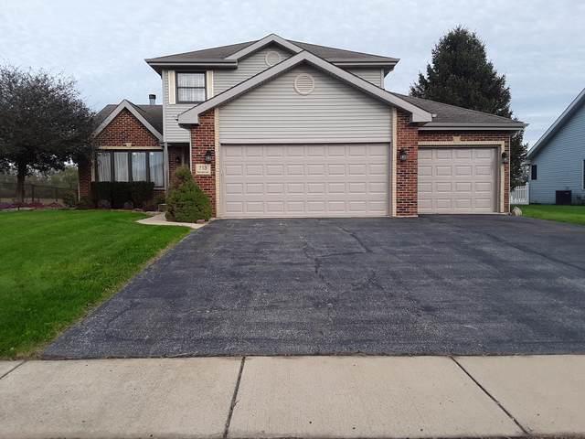 713 Merganser Lane, Peotone, IL 60468 (MLS #10501674) :: Suburban Life Realty