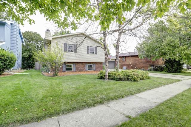3008 Mirium Drive, Bloomington, IL 61704 (MLS #10507009) :: BNRealty