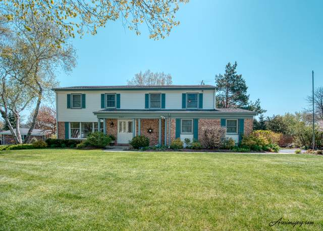 347 S Whitehall Drive, Palatine, IL 60067 (MLS #10581355) :: Property Consultants Realty