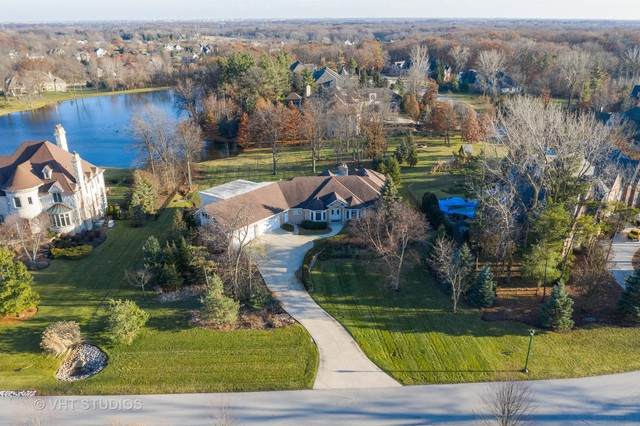 16349 S Alberta Court, Homer Glen, IL 60441 (MLS #10583700) :: Century 21 Affiliated