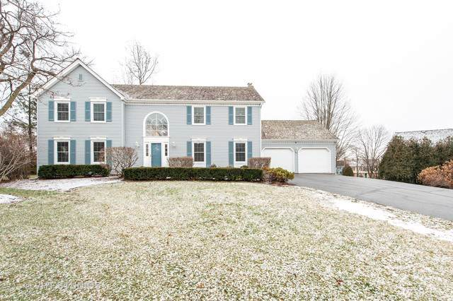481 Paul Circle, Barrington, IL 60010 (MLS #10601032) :: Ani Real Estate