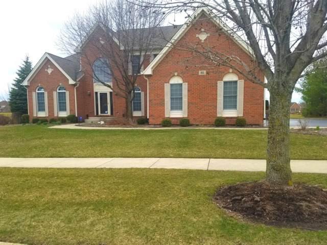 61 Tournament Drive N, Hawthorn Woods, IL 60047 (MLS #10633410) :: Helen Oliveri Real Estate