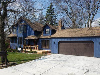 19196 W Fairview Drive, Mundelein, IL 60060 (MLS #10635219) :: Helen Oliveri Real Estate