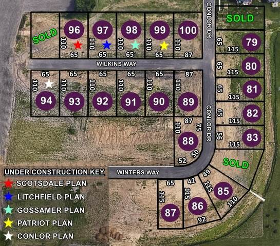 Lot 100 Wilkins Way, Bloomington, IL 61704 (MLS #10646234) :: Jacqui Miller Homes