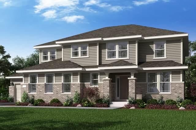 24425 N Blue Aster Lot #65 Lane, Lake Barrington, IL 60010 (MLS #10650675) :: John Lyons Real Estate