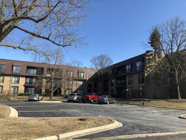 2 The Court Of Harborside Drive #202, Northbrook, IL 60062 (MLS #10655513) :: Helen Oliveri Real Estate