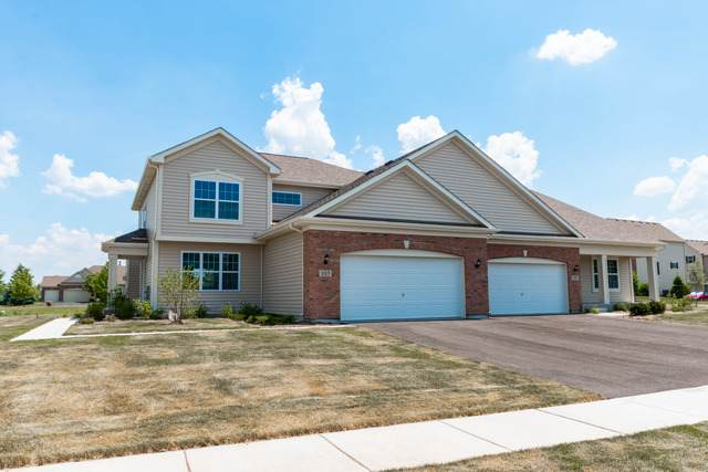 105 Valencia Parkway, Gilberts, IL 60136 (MLS #10660282) :: Littlefield Group