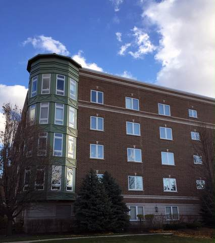 1277 E Thacker Street #207, Des Plaines, IL 60016 (MLS #10664618) :: Property Consultants Realty