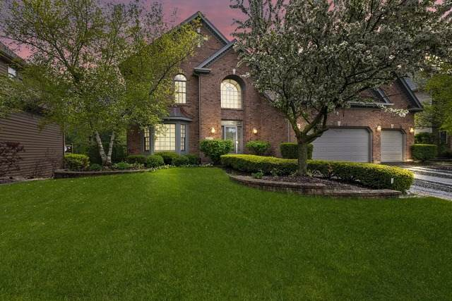 3512 Sweet Maggie Lane, Naperville, IL 60564 (MLS #10721550) :: O'Neil Property Group