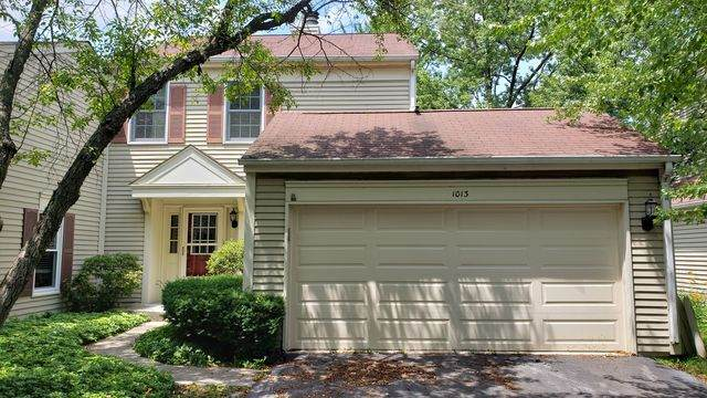 1013 Oswego Road, Naperville, IL 60540 (MLS #10770368) :: John Lyons Real Estate