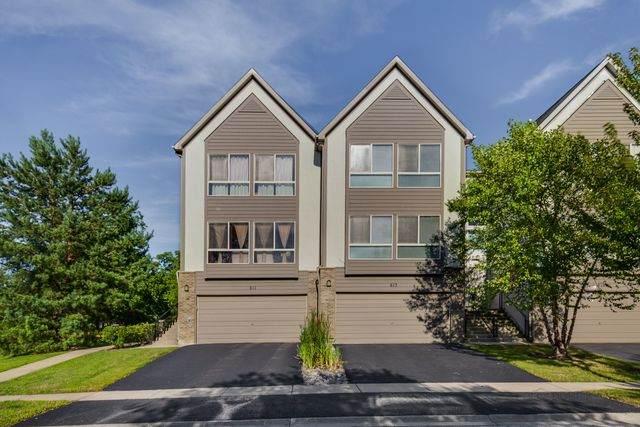 613 Diamond Pointe Drive, Mundelein, IL 60060 (MLS #10800930) :: John Lyons Real Estate