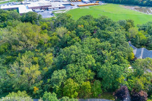0 Northampton Lane, Lincolnshire, IL 60069 (MLS #10859909) :: Helen Oliveri Real Estate