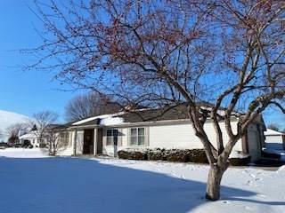 13612 S Magnolia Drive, Plainfield, IL 60544 (MLS #10981742) :: The Dena Furlow Team - Keller Williams Realty