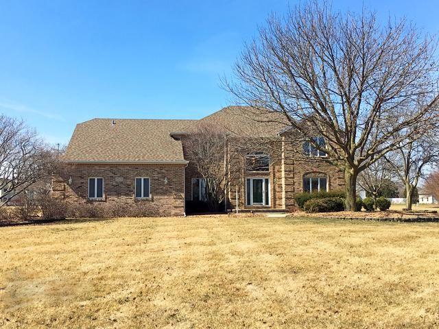 17339 S Mckenna Drive, Plainfield, IL 60586 (MLS #09766676) :: The Jacobs Group