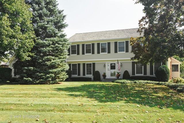 20843 Deer Lake Drive, Deer Park, IL 60010 (MLS #09835019) :: RE/MAX Unlimited Northwest