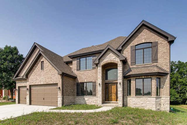 20346 Grand Traverse Drive, Frankfort, IL 60423 (MLS #09908985) :: The Jacobs Group