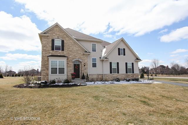 6 Stoney Ridge Court, Hawthorn Woods, IL 60047 (MLS #09921288) :: Helen Oliveri Real Estate