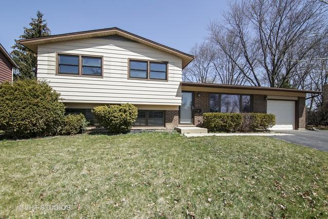 406 W Hackberry Drive, Arlington Heights, IL 60004 (MLS #09923652) :: Helen Oliveri Real Estate