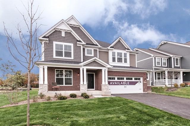 3587 Elsie  Lot# 24 Lane, Hoffman Estates, IL 60192 (MLS #09954070) :: Berkshire Hathaway HomeServices Snyder Real Estate