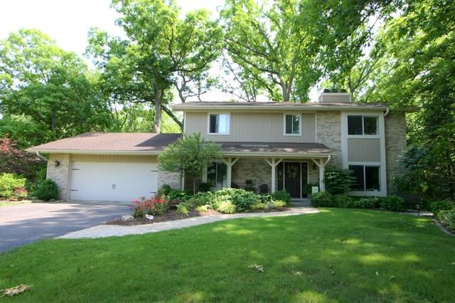 12831 W Pheasant Court, Homer Glen, IL 60491 (MLS #09978676) :: Lewke Partners
