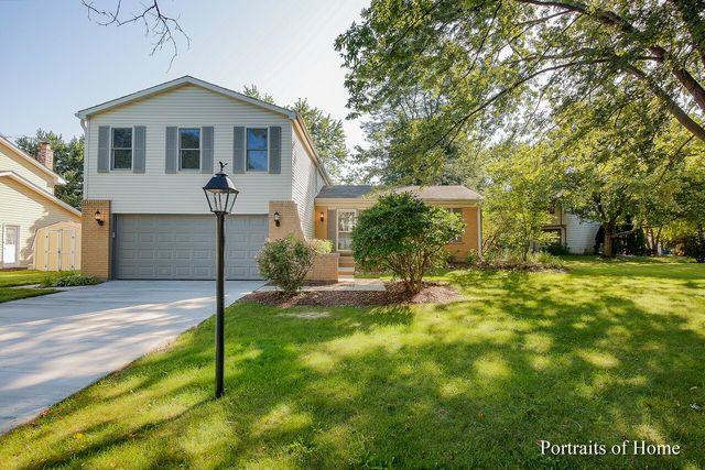 6S049 Greenwood Court, Naperville, IL 60540 (MLS #10054831) :: The Saladino Sells Team