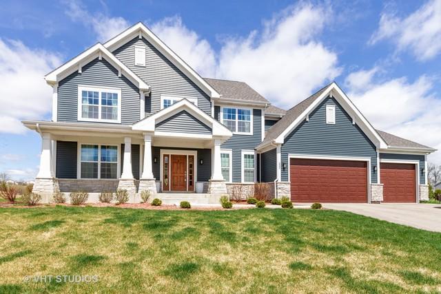 232 Frances Drive, Grayslake, IL 60030 (MLS #10356911) :: Helen Oliveri Real Estate