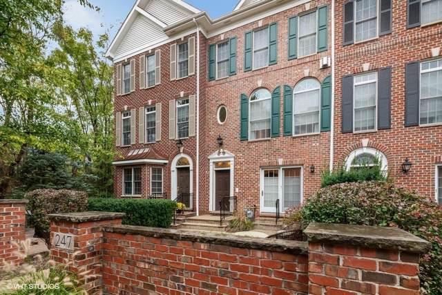 247 Box Car Avenue, Naperville, IL 60540 (MLS #10553749) :: Angela Walker Homes Real Estate Group