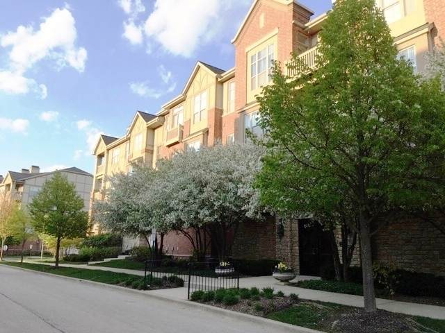 1781 Tudor Lane #206, Northbrook, IL 60062 (MLS #10598594) :: Property Consultants Realty